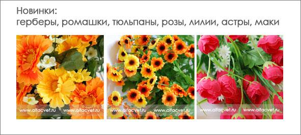 Цветы уфа оптом